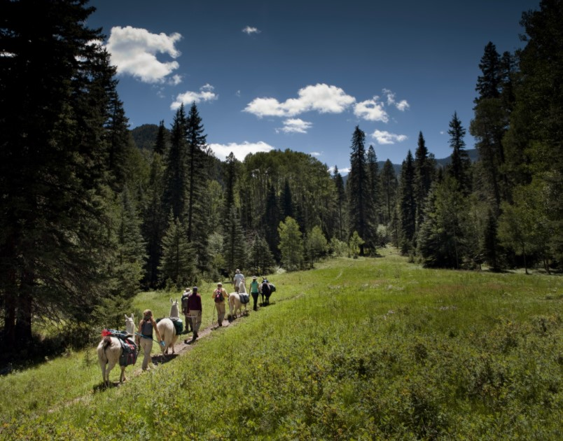 best things to do in taos nm