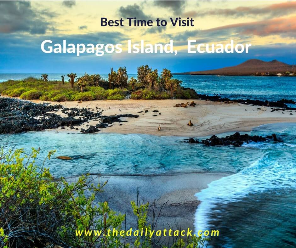 When is The Best Time to Galapagos Island, Ecuador